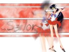 Sailor Moon Wallpapers #8